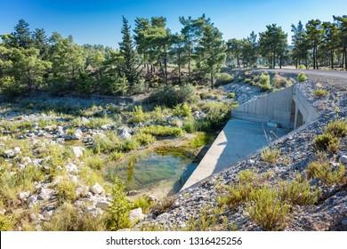 Wild nature around Gadoura Dam on Rhodes Island (Rhodes, Greece)
