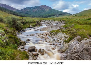 Wild nature in the island of Arran