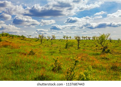 wild nature landscape scene and clouds above