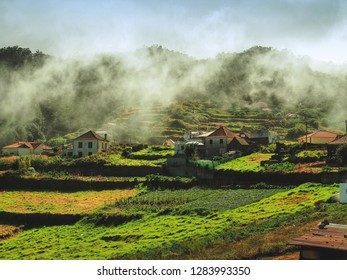 Wild Nature in Madeira, Portugal with spectacular mountain villages, tea, shutter, terrace, balcony, church, cathedral, japan, rainforest, valley, vacation, journey, fields, spain, plantation