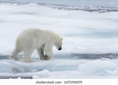 Global Warming Images, Stock Photos & Vectors | Shutterstock