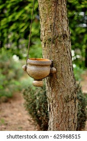 Wild pot