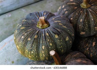 Wild pumpkin. Squash. Kobocha. Bobora. Wild vegetables. Thai pumpkin. Cucurbita.