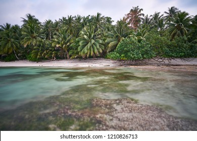 Wild and pure tropical beach