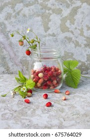 wild red strawberry with green leaf and white flower in the glass