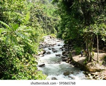 Wild river in rain forest of Borneo Malaysia.