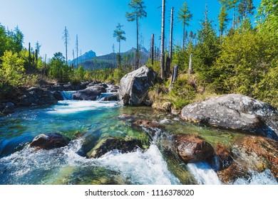 Wild river in Slovakia, Tatras high mountains