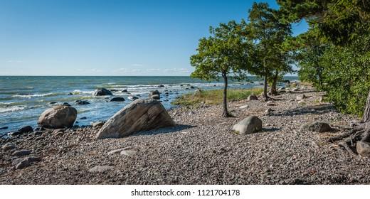 Wild rocky coastline of the Baltic sea in summer. The Gulf of Finland, Estonia.