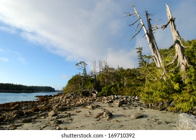 Wild, romantic beach in the west of Canada