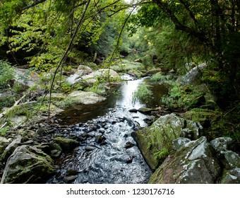 Wild and Scenic River Scene