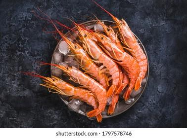 Wild shrimps, ocean jumbo shrimps on dark background copy space.