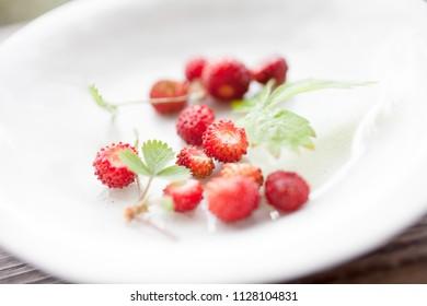 Wild strawberries on white plate