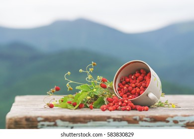 Wild strawberries on a wooden table over mountains background.