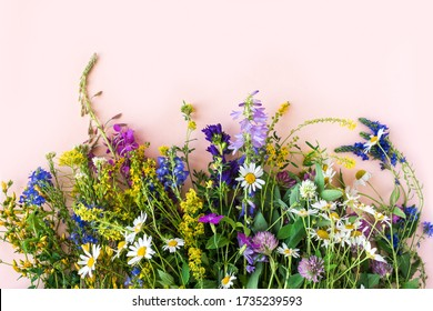 Wild summer flowers, bunch of meadow flowers on pink background, top view, copy space. Summer and natural lifestyle concept.
