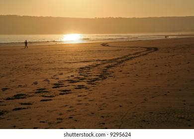 wild sunset beach