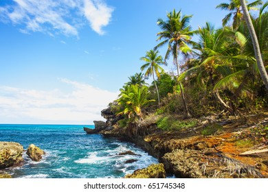 Wild tropical rocky shore, bay, lagoon. Sea stormy Splash, Green palm trees on the rocks. Las Galeras, Samana, Dominican Republic
