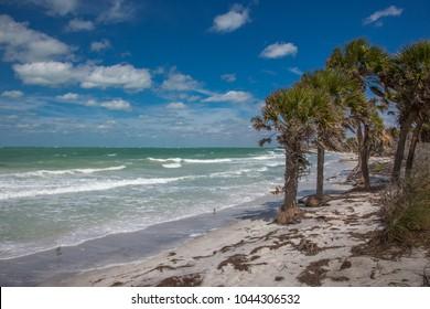 Wild uninhabited shore of Egmont Key State Park on the Gulf of Mexico on the west coast of Florida
