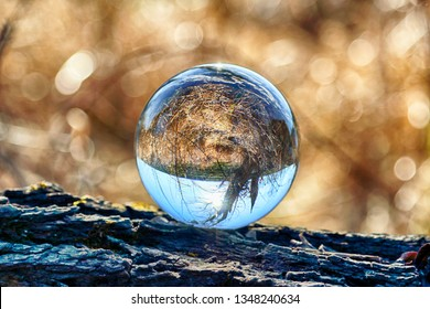 Wild, untouched nature. View through a glass, crystal ball (lensball) for refraction photography.