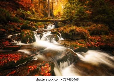 Wild waterfalls flowing through a forest, autumn