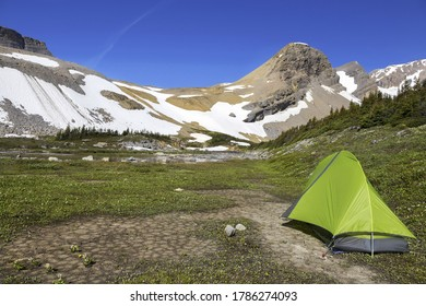 Wilderness Backcountry Nature Camping Tent in Canadian Rocky Mountains Alpine Meadow Summertime Landscape