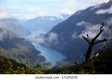 The wilderness of Fiordland National Park, South island, New Zealand