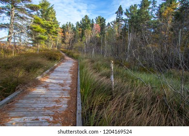 Wilderness Hiking Trail. Boardwalk through wetlands along the North Country Trail in the Hiawatha National Forest in the Upper Peninsula of Michigan.