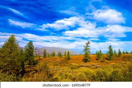 WIlderness plain landscape. Spring in steppe wilderness - Shutterstock ID 1690148779