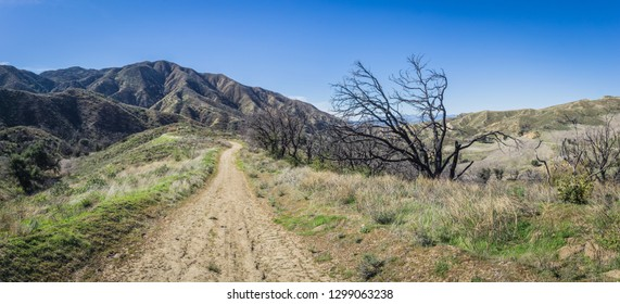 Wilderness walking trail in the hills of southern California near the city of Santa Clarita.