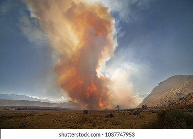 wildfire smoke near Pleasant Valley Campground in the Owens Valley with the sun barely shining through it