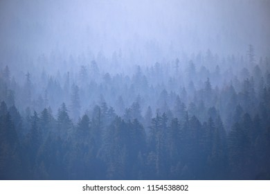 Wildfire smoke in Southern Oregon from near by forest fires