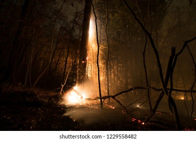 wildfires spread across a forest in Chattanooga, Tennessee, USA 11.8.2016