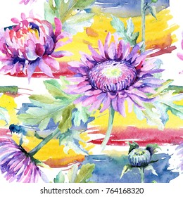 Wildflower chrysanthemum flower pattern in a watercolor style. Full name of the plant: chrysanthemum, dahlia, marigold. Aquarelle wild flower for background, texture, wrapper pattern, frame or border.