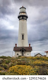 Wildflowers bloom before the Pigeon Point Lighthouse on a cloudy day on the Pacific Coast of California.