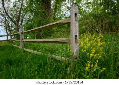 Wildflowers by a split rail fence at Cherry Brook Preserve in Montgomery, New Jersey.