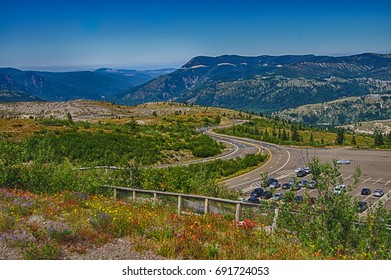 Wildflowers decorate the winding road to the Mt St Helens Volcanic National Monument, Washington