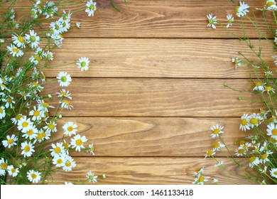 wildflowers and herbs on a wooden background. Chamomile.