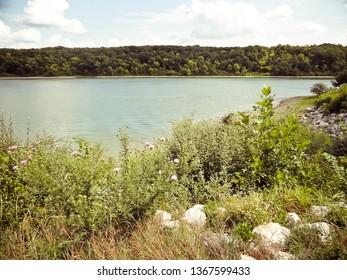 Wildflowers and Rocks Beside Lake at  Thousand Hills State Park - Kirksville, Missouri