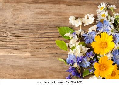 Wildflowers. Studio photography. Camomile, jasmine, cornflower, Doronicum, on the blackboard