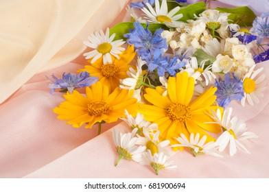 Wildflowers. Studio photography. Chamomile, jasmine, Doronicum, cornflower, flowers, photographed on silk fabric