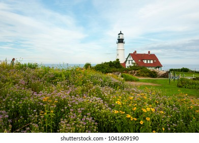 Wildflowers surround Portland Head lighthouse on a warm summ er day in Maine. It is Maineâ??s oldest beacon.