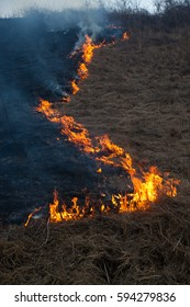 wildfrire - dry grass burning in early spring