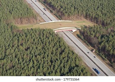 Wildlife crossing (bridge)