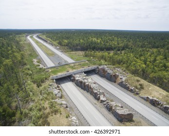 Wildlife Crossing - Bridge over a highway in forest
