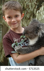 Wildlife parks in Australia offer visitors an opportunity to cuddle a koala. Eight year old boy cuddles in this image.