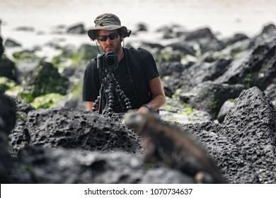 Wildlife photographer and tourist on Galapagos taking photo of Marine Iguana on Tortuga bay beach. Marine iguana is an endemic species iconic to Galapagos Islands wildlife and nature. Animals, Ecuador