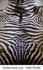 wildlife skin with fur, animal remain as textile texture background