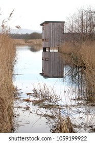 Wildlife watcher hide on the Somerset Levels