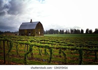 Willamette Valley Barn , Northern Oregon