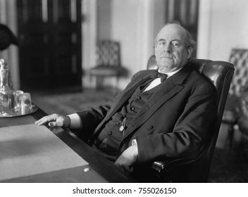 William Jennings Bryan as Secretary of State in the Woodrow Wilson Administration, 1913-1915.