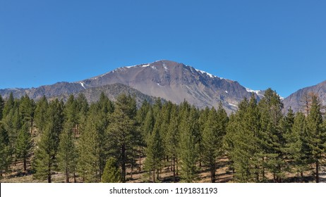 Route 395 Images, Stock Photos & Vectors | Shutterstock